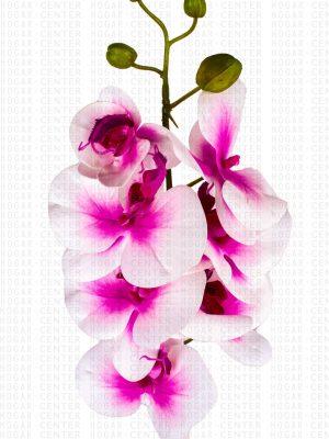 Flor Artificial – Orquídea